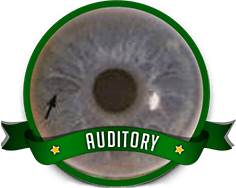 Auditory Eye